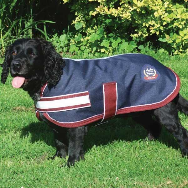 Mackey Dog Rug