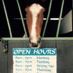 disease-control-in-horses2