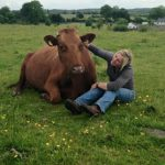 christa-with-cow