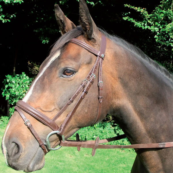 Bridle-with-Padded-Noseband