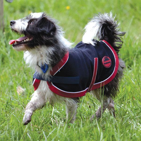 Weatherbeeta Fleece Dog Rug: Weatherbeeta Fleece Dog Coat