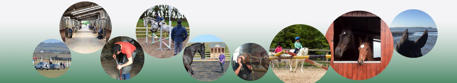 HorsePlay-Directory3
