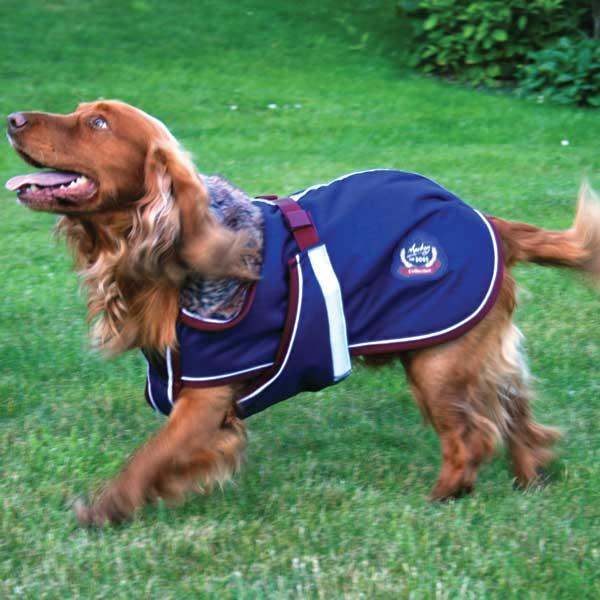 Mackey-Collar-Dog-Fur