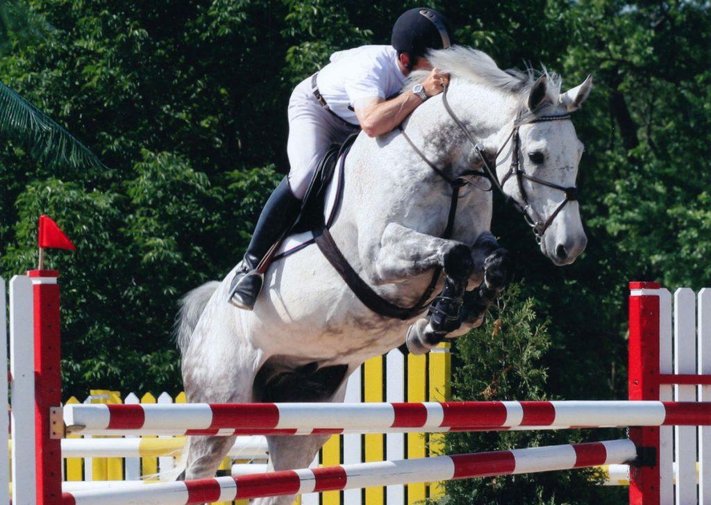 Derek-McConnell-Chicago-Horse-Show-USA
