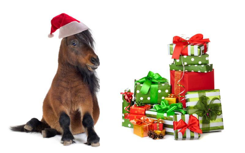 HorsePlay-Christmas