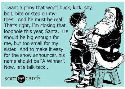 HorsePlay Christmas wish