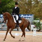 dressage-at-pau