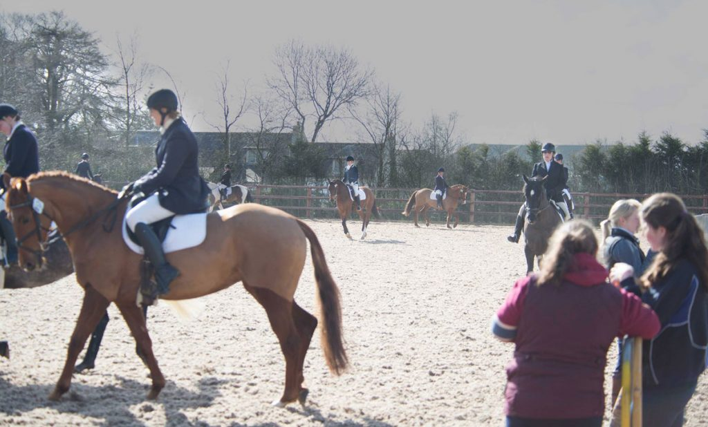 Competition-schedule-for-the-young-horse