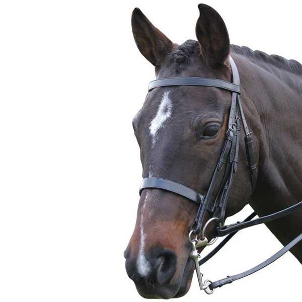 KINCADE-SHOW-WEYMOUTH-DOUBLE-BRIDLE