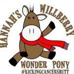 willbury-wonder-pony
