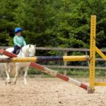 Keeping Your Kids Safe and Sensible Around Horses