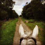 horse-riding2-2