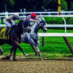 A Definitive Guide to Horse Betting Like a Professional
