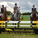 Tattersalls Ireland July Show an overwhelming success