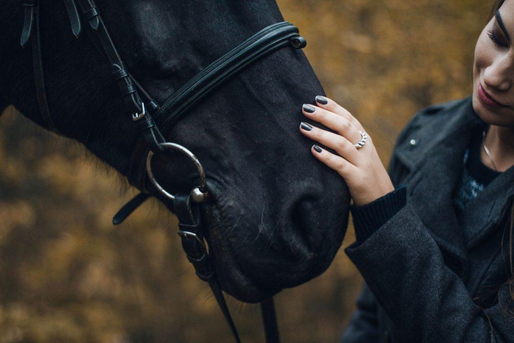 horse-allergies