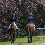 tattersalls-thursday-30-may-15