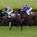 Champion Stakes: Betting Preview