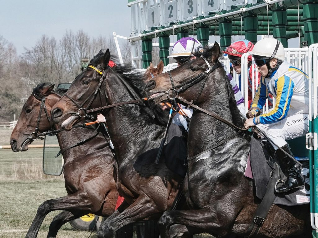 Horse Racing Terms: Your A-Z Horse Racing Terminology Guide
